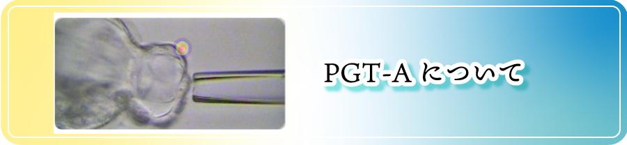 PGT-Aについて
